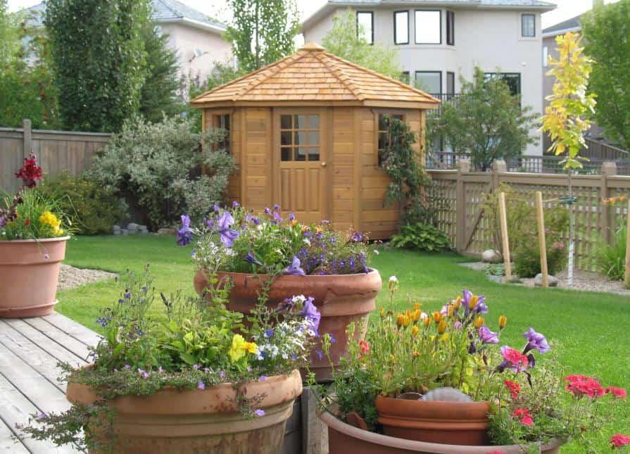 Catalina Garden Shed